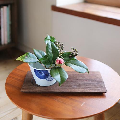 【まいにちと花】<br> 如月 2月 「春待つ冬の花」
