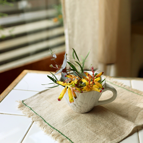 【まいにちと花】<br> 弥生 3月 「おどる球根花」