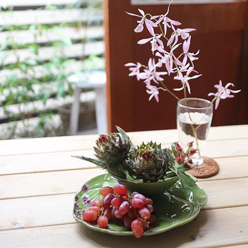 【まいにちと花】<br> 文月7月 「夏のテーブル」