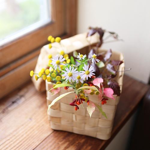 【まいにちと花】<br> 霜月11月 「小春日和」