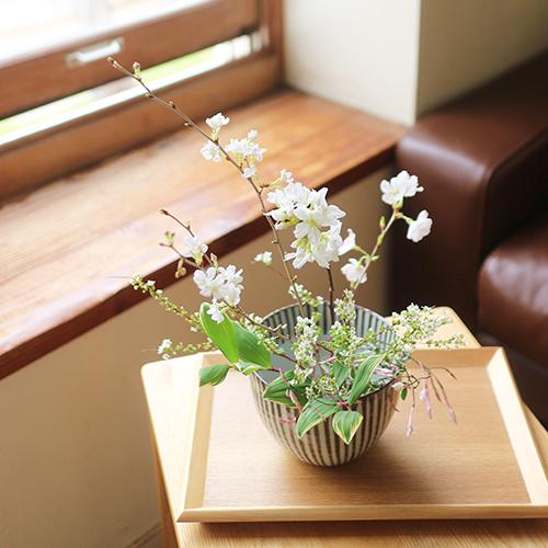 【まいにちと花】<br> 卯月4月 「門出を祝って」