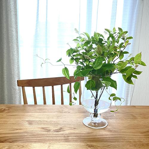 【スタッフのおうち時間】<br>季節の植物を飾る暮らし